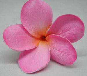 Hot Pink Plumeria Sample